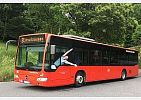 pristi-zastavka-nemecko-rozhovor-s-ridicem-autobus